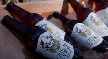 """Premiera piwa """"Szuwar"""" w Małym Holendrze na Żuławach"""